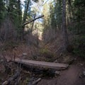 Footbridge in Elbow Fork on the hike to Mount Aire.- Mount Aire Hike
