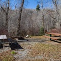A typical campsite in Affleck Park Campground.- Affleck Park Campground