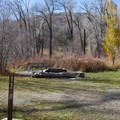 Typical campsite in Affleck Park Campground.- Affleck Park Campground