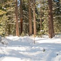 Trailhead from the parking lot. - Yellow Trail Snowshoe in Sugar Pine Point State Park