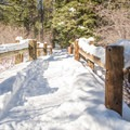 Bridge along the Yellow Trail at Sugar Pine Point State Park.- Yellow Trail Snowshoe in Sugar Pine Point State Park