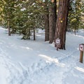 Yellow Trail intersection.- Yellow Trail Snowshoe in Sugar Pine Point State Park