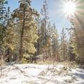 Omega Diggings Overview Trail.- Omega Diggins Overlook Hike