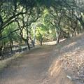 680 Trail in Terra Linda/Sleepy Hollow Open Space Preserve.- Terra Linda Fire Road + 680 Trail Hike