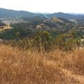 View toward Terra Linda.- Terra Linda Fire Road + 680 Trail Hike