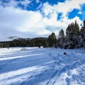 The climb begins when you enter the forest along the edge of Tahoe Meadows.- Chickadee Ridge Snowshoe