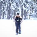 Snowshoeing to Chickadee Ridge.- Chickadee Ridge Snowshoe