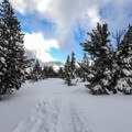 There are several routes up the ridge.- Chickadee Ridge Snowshoe
