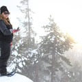 One of the friendly chickadees that gives the route its name.- Chickadee Ridge Snowshoe