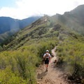 Much of the climb follows ridgelines.- Mount Diablo Hike via Mitchell Canyon Visitor Center