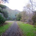Final stretch on he return from Mount Diablo.- Mount Diablo Hike via Mitchell Canyon Visitor Center