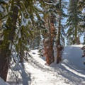 Snowshoeing to Loch Leven Lakes.- Loch Leven Lakes Snowshoe