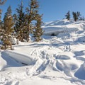 Fresh track up the hill on the way to Loch Leven Lakes.- Loch Leven Lakes Snowshoe