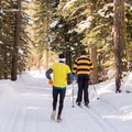 Skier and jogger on the Red Trail.- Red Trail Snowshoe in Sugar Pine Point State Park