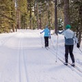 Skiers on the Blue Trail at Sugar Pine Point State Park.- Blue Trail Snowshoe in Sugar Pine Point State Park