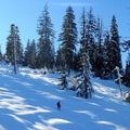 Wandering off trail on the way to Brown Mountain has its benefits.- Brown Mountain Snowshoe