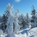 Skiers and snowshoers alike will find adventure on the slopes of Brown Mountain.- Brown Mountain Snowshoe