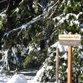 Tamanawas trailhead.- Tamanawas Falls Snowshoe