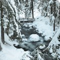 Bridge over Cold Spring Creek.- Tamanawas Falls Snowshoe