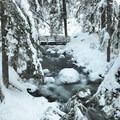 Bridge over Cold Spring Creek.- Tamanawas Falls Snowshoe