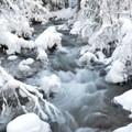 Cold Spring Creek.- Tamanawas Falls Snowshoe