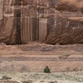 Ledge Ruin in Canyon De Chelly National Monument.- Canyon De Chelly National Monument