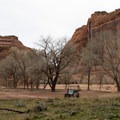 Looking back into Canyon Del Muerto, Canyon De Chelly National Monument.- Canyon De Chelly National Monument