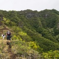Looking up trail in the early going.- Pu'u Manamana Turnover Trail