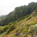 Looking down toward the town of Ka'a'awa.- Pu'u Manamana Turnover Trail