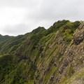 The Ko'olau Mountains stretch out like a curtain of stone.- Pu'u Manamana Turnover Trail