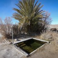 An oasis in the Mojave Desert.- Tecopa Hot Tub