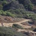 Biking/running trails traverse the bluffs.- Sunset Cliffs Natural Park