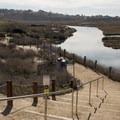 Trails open up the lagoon for exploration.- San Elijo Lagoon