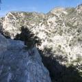 Narrow trail along the Bear Canyon Trail portion of hike.- Switzer Falls Hike via Gabrielino Trail