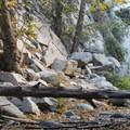 Switzer Falls, Arroyo Seco.- Switzer Falls Hike via Gabrielino Trail