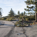 Little Pines Campground.- Chilao Campground, Little Pines Loop