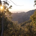 View west from Mount Wilson Skyline Park.- Mount Wilson Skyline Park + Viewpoint