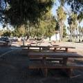 Picnic area at Cabrillo Beach.- Cabrillo Beach