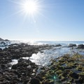Tide pools at White Point - Royal Palms Beach Park.- White Point - Royal Palms Beach Park