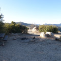 Typical campsite at Chilao Campground, Manzanita Loop.- Chilao Campground, Manzanita Loop