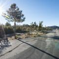 Chilao Campground, Manzanita Loop.- Chilao Campground, Manzanita Loop
