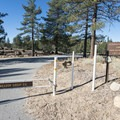 Meadow Group Campground.- Meadow Group Campground