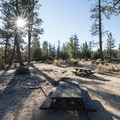 One of three group campsites at Meadow Group Campground.- Meadow Group Campground