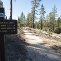 Access to Silver Moccasin Trail from Horse Flats Campground.- Horse Flats Campground