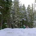The road from the Salt Creek Sno-Park to Salt Creek Falls Trail.- Salt Creek Falls + Diamond Creek Falls Snowshoe