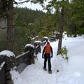 Snowshoeing along the Salt Creek Falls Trail.- Salt Creek Falls + Diamond Creek Falls Snowshoe