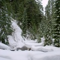 Snow covered Diamond Creek.- Salt Creek Falls + Diamond Creek Falls Snowshoe