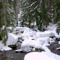 Diamond Creek.- Salt Creek Falls + Diamond Creek Falls Snowshoe