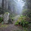The Horse Creek South Trailhead.- Horse Creek South Trail Hike