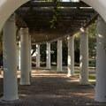 Walkway in Presidio Park.- Presidio Park